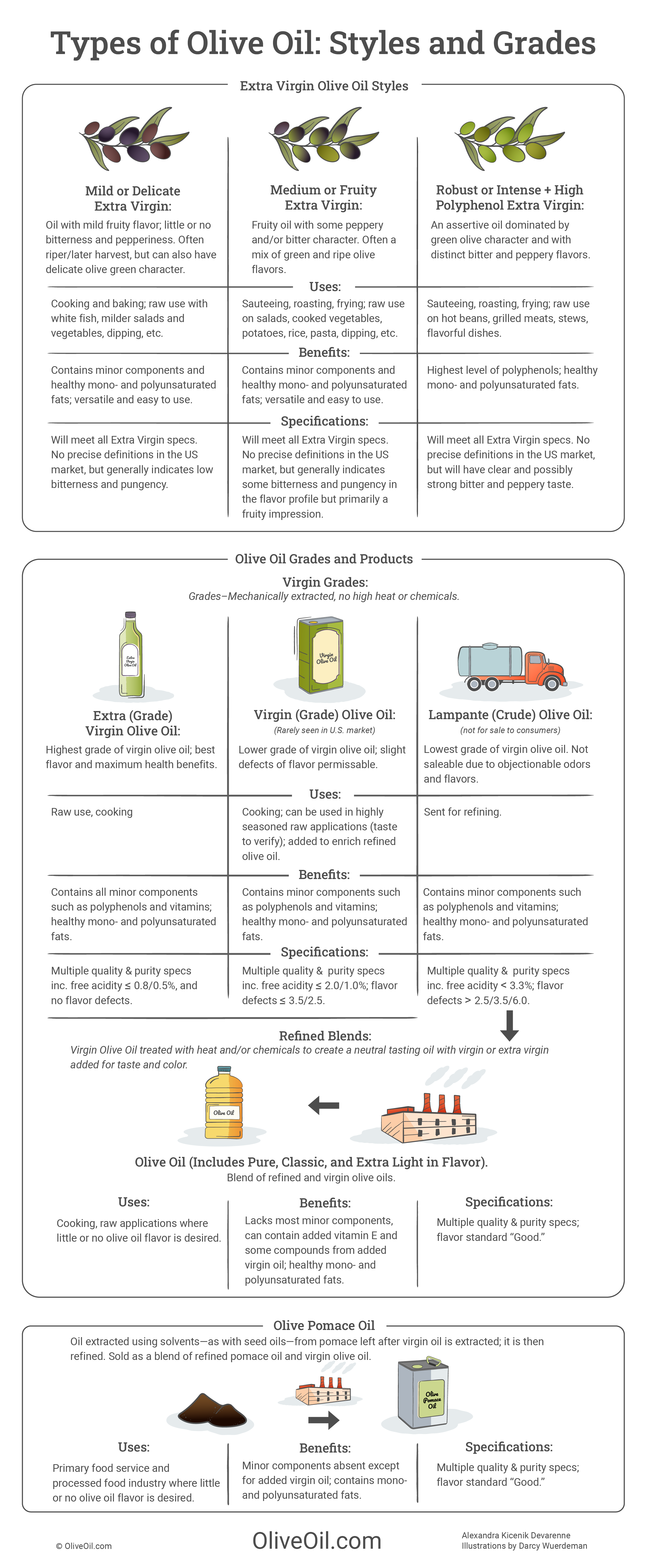 Types of Olive Oil Infographic showing olive oil grades and extra virgin olive oil styles